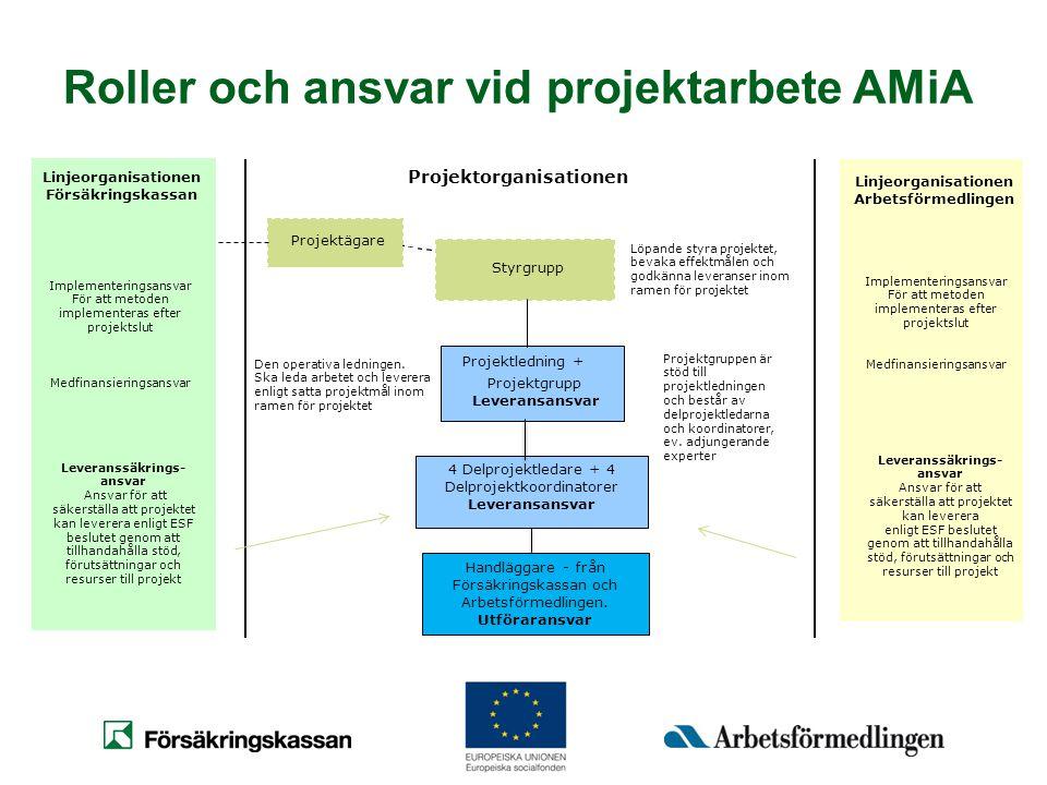 Roller och ansvar vid projektarbete AMiA Projektägare Styrgrupp Projektledning + Leveransansvar 4 Delprojektledare + 4 Delprojektkoordinatorer Leveran