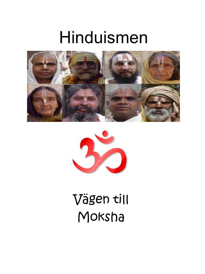 En renlärig Hindu •Född i en kast.•Inte släcka liv, för allt liv är heligt.