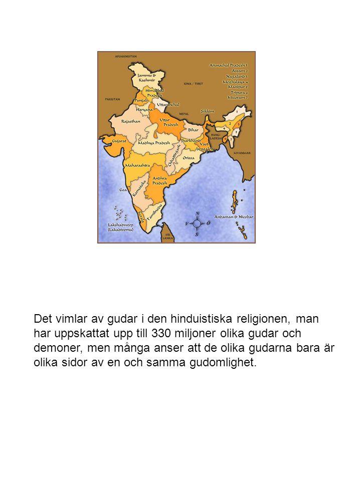 Det vimlar av gudar i den hinduistiska religionen, man har uppskattat upp till 330 miljoner olika gudar och demoner, men många anser att de olika guda