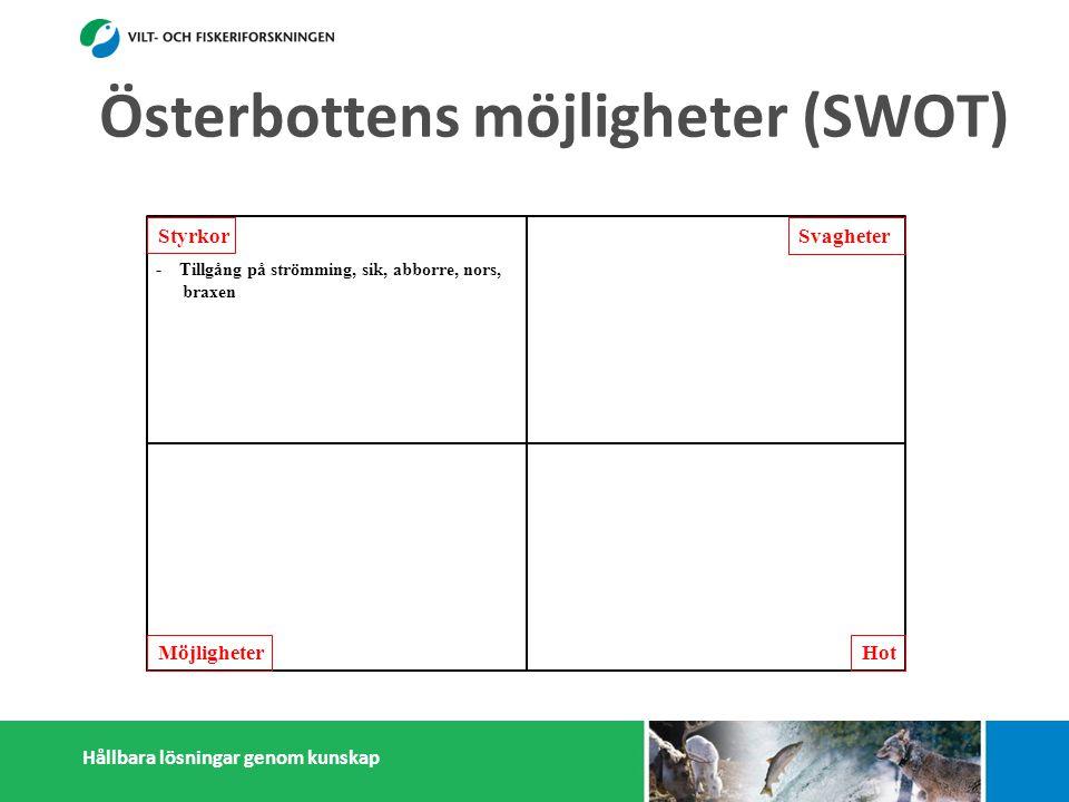 Hållbara lösningar genom kunskap Österbottens möjligheter (SWOT) Styrkor Möjligheter Svagheter Hot - Tillgång på strömming, sik, abborre, nors, braxen - Infrastruktur (fiskehamnar) - Kapasitet att motta och förädla strömming - Många småskaliga fiskförädlare - Pälsdjurnäring: Efterfrågan på foderfisk - Österbottningar håller sig ihop - Kunskap i fiskefrågor -Tillgång på lax och sik minskar -Artsammansättning är prisbilligare -Antalet fiskare sjunker -Litet matfiskodling -Låg invånarantal - Få konsumenter -Få stora fiskförädlare/partihandlare -Isolering -Sikfisket regleras ännu mera -Marginalisering av fiskerisektor -Konflikter med miljöintresenter -Dålig rykte i massmedia -Efterfrågan på pälsdjurskinn sjunker -Utsättning/vård av lokala fiskstammar -Export av nors och mörtfiskar -Fiskarenas egen förädling -Produktutveckling: Abborre, mörtfiskar -Utveckla öppet sjö fiskodling -Utveckla samarbetet mellan fiskare, parti- handlare och förädlare (importfisk) -Starkare samarbetande inom och utanför fiskerikluster