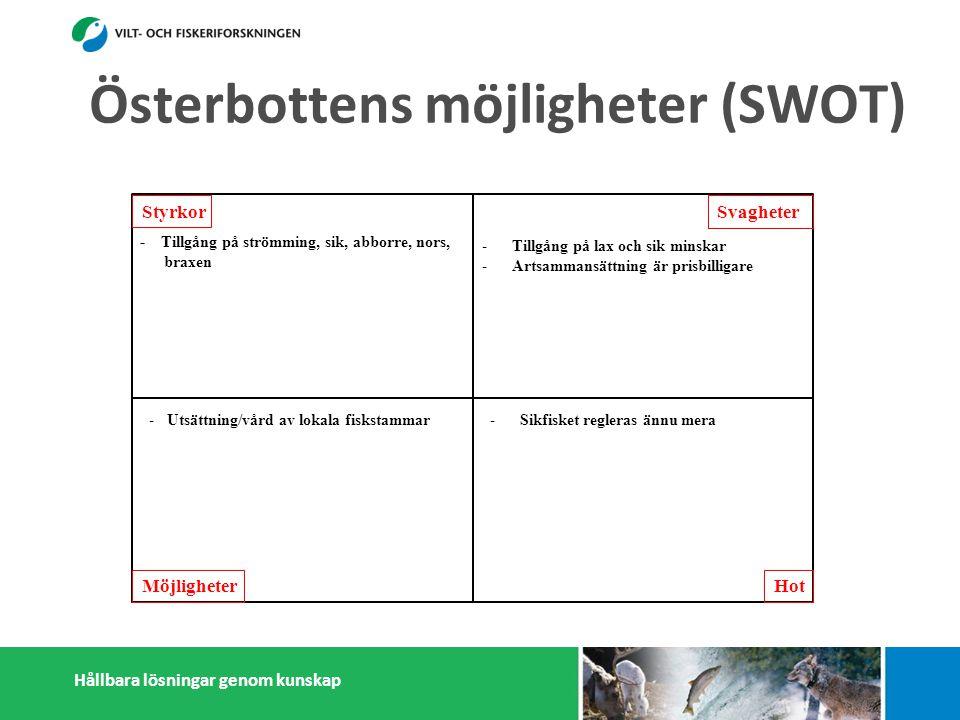Hållbara lösningar genom kunskap Styrkor Möjligheter Svagheter Hot - Tillgång på strömming, sik, abborre, nors, braxen - Infrastruktur (fiskehamnar) - Kapasitet att motta och förädla strömming - Många småskaliga fiskförädlare - Pälsdjurnäring: Efterfrågan på foderfisk - Österbottningar håller sig ihop - Kunskap i fiskefrågor -Tillgång på lax och sik minskar -Artsammansättning är prisbilligare -Antalet fiskare sjunker -Litet matfiskodling -Låg invånarantal - Få konsumenter -Få stora fiskförädlare/partihandlare -Isolering -Sikfisket regleras ännu mera -Marginalisering av fiskerisektor -Konflikter med miljöintresenter -Dålig rykte i massmedia -Efterfrågan på pälsdjurskinn sjunker -Utsättning/vård av lokala fiskstammar -Export av nors och mörtfiskar -Fiskarenas egen förädling -Produktutveckling: Abborre, mörtfiskar -Utveckla öppet sjö fiskodling -Utveckla samarbetet mellan fiskare, parti- handlare och förädlare (importfisk) -Starkare samarbetande inom och utanför fiskerikluster Österbottens möjligheter (SWOT)