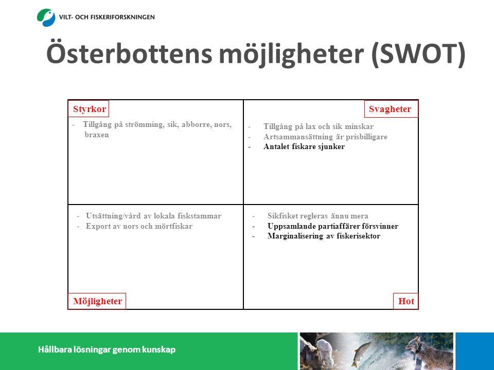 Hållbara lösningar genom kunskap Styrkor Möjligheter Svagheter Hot - Tillgång på strömming, sik, abborre, nors, braxen -Kapasitet att motta och förädla strömming - Många småskaliga fiskförädlare - Pälsdjurnäring: Efterfrågan på foderfisk - Österbottningar håller sig ihop - Kunskap i fiskefrågor -Tillgång på lax och sik minskar -Artsammansättning är prisbilligare -Antalet fiskare sjunker -Litet matfiskodling -Låg invånarantal - Få konsumenter -Få stora fiskförädlare/partihandlare -Isolering -Sikfisket regleras ännu mera -Uppsamlande partiaffärer försvinner -Marginalisering av fiskerisektor -Konflikter med miljöintresenter -Dålig rykte i massmedia -Efterfrågan på pälsdjurskinn sjunker -Utsättning/vård av lokala fiskstammar -Export av nors och mörtfiskar -Fiskarenas egen förädling -Produktutveckling: Abborre, mörtfiskar -Utveckla öppet sjö fiskodling -Utveckla samarbetet mellan fiskare, parti- handlare och förädlare (importfisk) -Starkare samarbetande inom och utanför fiskerikluster Österbottens möjligheter (SWOT)