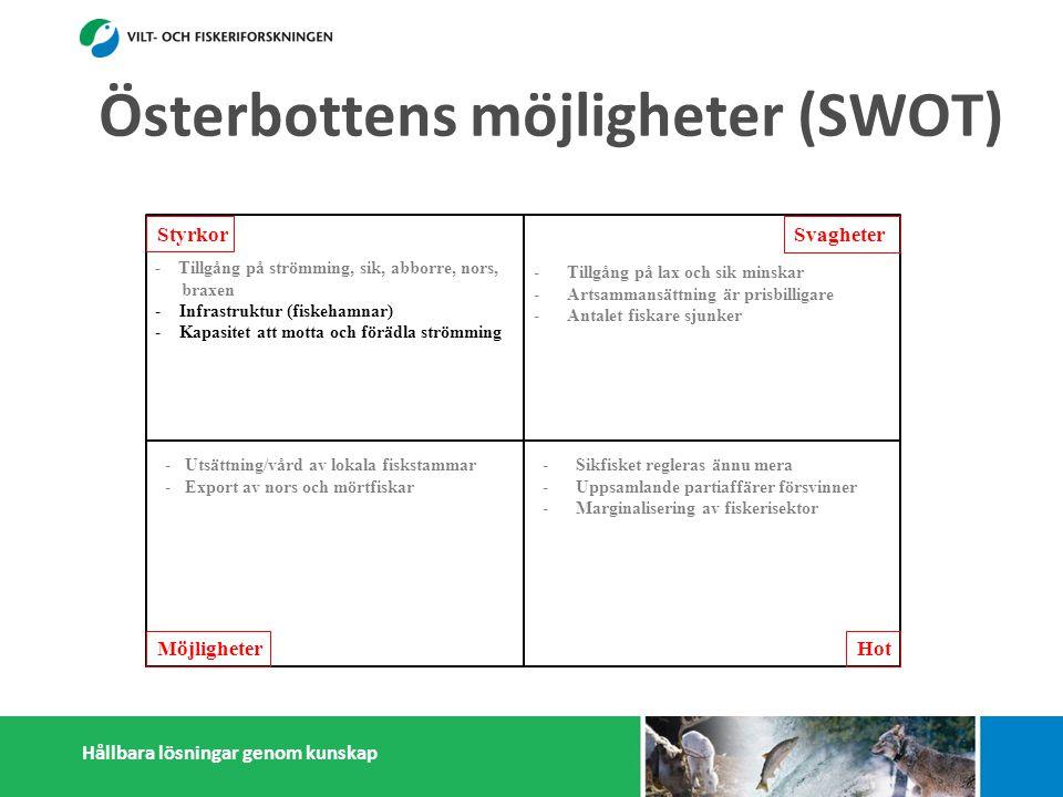 Hållbara lösningar genom kunskap Styrkor Möjligheter Svagheter Hot - Tillgång på strömming, sik, abborre, nors, braxen - Infrastruktur (fiskehamnar) - Kapasitet att motta och förädla strömming - Många småskaliga fiskförädlare - Pälsdjurnäring: Efterfrågan på foderfisk - Österbottningar håller sig ihop - Kunskap i fiskefrågor -Tillgång på lax och sik minskar -Artsammansättning är prisbilligare -Antalet fiskare sjunker -Litet matfiskodling -Låg invånarantal - Få konsumenter -Få stora fiskförädlare/partihandlare -Isolering -Sikfisket regleras ännu mera -Uppsamlande partiaffärer försvinner -Marginalisering av fiskerisektor -Konflikter med miljöintresenter -Dålig rykte i massmedia -Efterfrågan på pälsdjurskinn sjunker -Utsättning/vård av lokala fiskstammar -Export av nors och mörtfiskar -Fiskarenas egen förädling -Produktutveckling: Abborre, mörtfiskar -Utveckla öppet sjö fiskodling -Utveckla samarbetet mellan fiskare, parti- handlare och förädlare (importfisk) -Starkare samarbetande inom och utanför fiskerikluster Österbottens möjligheter (SWOT)