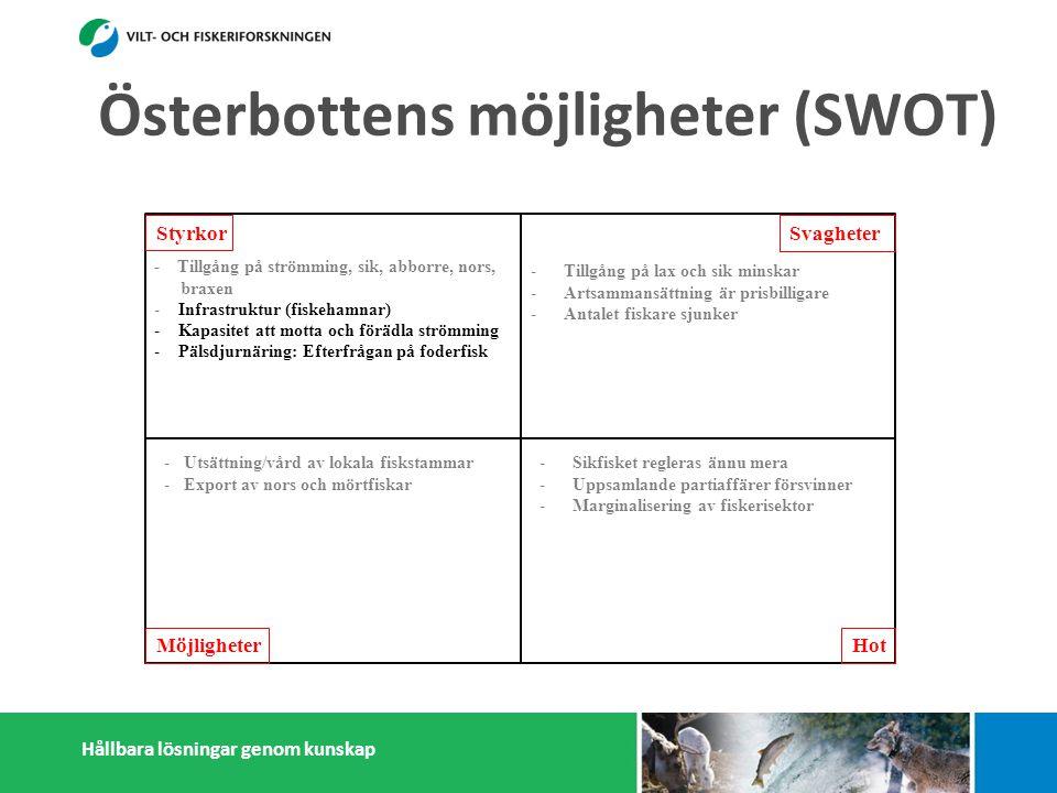Hållbara lösningar genom kunskap Styrkor Möjligheter Svagheter Hot - Tillgång på strömming, sik, abborre, nors, braxen - Infrastruktur (fiskehamnar) - Kapasitet att motta och förädla strömming - Pälsdjurnäring: Efterfrågan på foderfisk -a småskaliga fiskförädlare - Österbottningar håller sig ihop - Kunskap i fiskefrågor -Tillgång på lax och sik minskar -Artsammansättning är prisbilligare -Antalet fiskare sjunker -Litet matfiskodling -Låg invånarantal - Få konsumenter -Få stora fiskförädlare/partihandlare -Isolering -Sikfisket regleras ännu mera -Uppsamlande partiaffärer försvinner -Marginalisering av fiskerisektor -inn sjunker -Konflikter med miljöintresenter -Dålig rykte i massmedia -Utsättning/vård av lokala fiskstammar -Export av nors och mörtfiskar -Fiskarenas egen förädling -Produktutveckling: Abborre, mörtfiskar -Utveckla öppet sjö fiskodling -Utveckla samarbetet mellan fiskare, parti- handlare och förädlare (importfisk) -Starkare samarbetande inom och utanför fiskerikluster Österbottens möjligheter (SWOT)