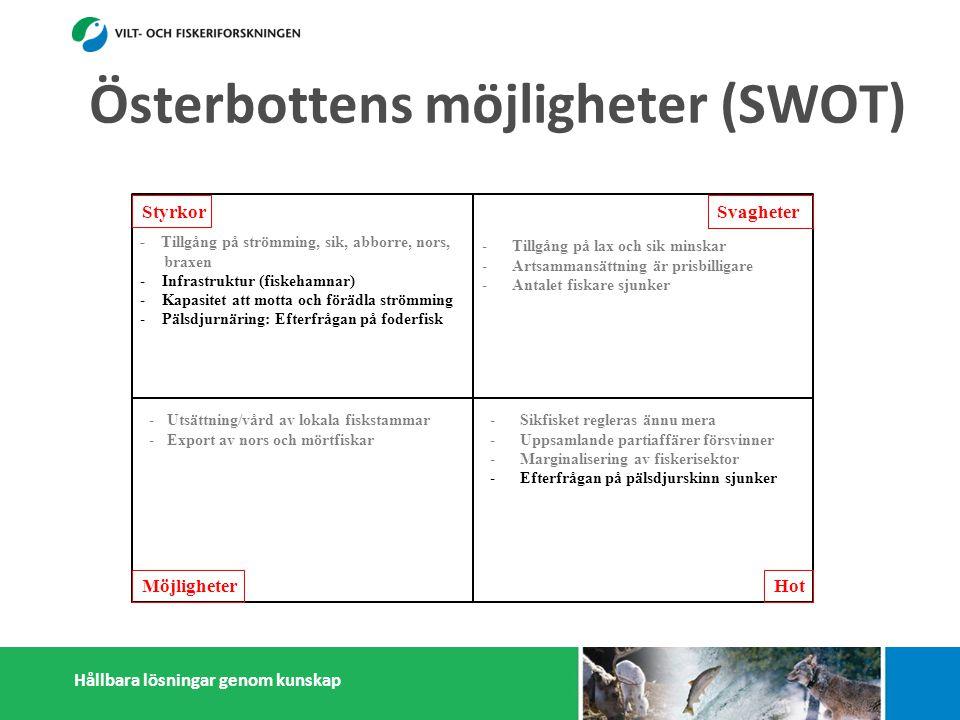 Hållbara lösningar genom kunskap Styrkor Möjligheter Svagheter Hot - Tillgång på strömming, sik, abborre, nors, braxen - Infrastruktur (fiskehamnar) - Kapasitet att motta och förädla strömming - Pälsdjurnäring: Efterfrågan på foderfisk -a småskaliga fiskförädlare - Österbottningar håller sig ihop - Kunskap i fiskefrågor -Tillgång på lax och sik minskar -Artsammansättning är prisbilligare -Antalet fiskare sjunker -Litet matfiskodling -Låg invånarantal - Få konsumenter -Få stora fiskförädlare/partihandlare -Isolering -Sikfisket regleras ännu mera -Uppsamlande partiaffärer försvinner -Marginalisering av fiskerisektor -Efterfrågan på pälsdjurskinn sjunker -Konflikter med miljöintresenter -Dålig rykte i massmedia -Utsättning/vård av lokala fiskstammar -Export av nors och mörtfiskar -Fiskarenas egen förädling -Produktutveckling: Abborre, mörtfiskar -Utveckla öppet sjö fiskodling -Utveckla samarbetet mellan fiskare, parti- handlare och förädlare (importfisk) -Starkare samarbetande inom och utanför fiskerikluster Österbottens möjligheter (SWOT)