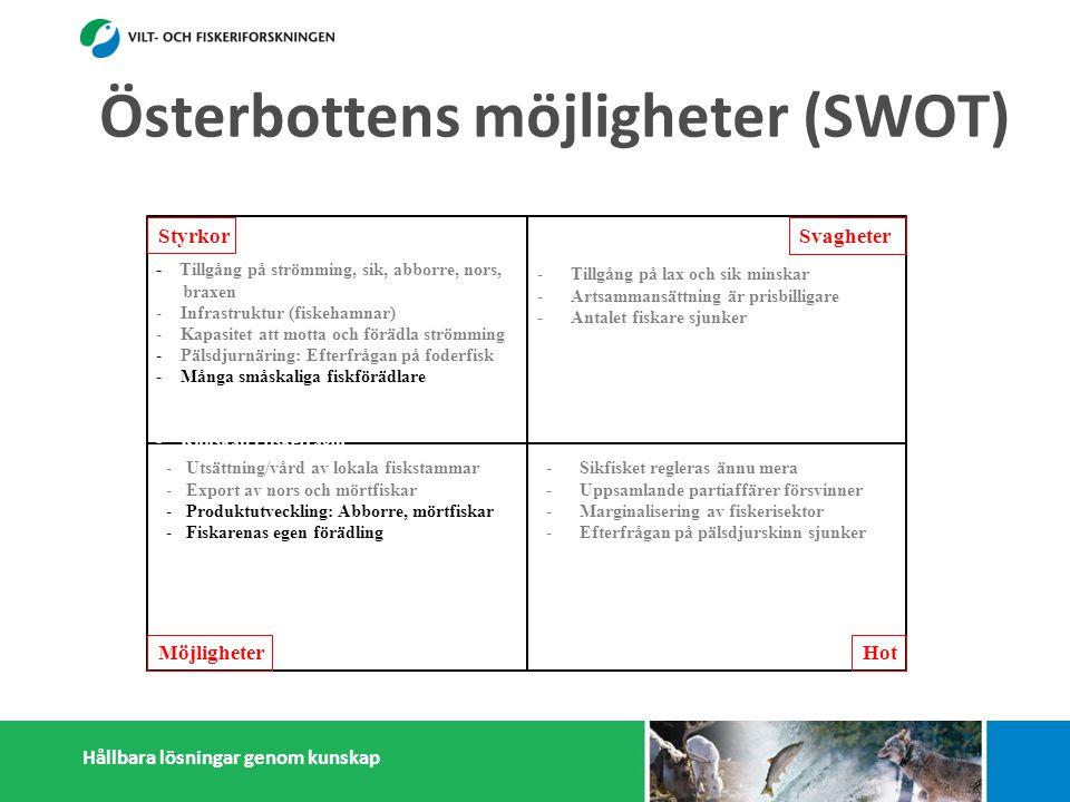 Hållbara lösningar genom kunskap Styrkor Möjligheter Svagheter Hot - Tillgång på strömming, sik, abborre, nors, braxen - Infrastruktur (fiskehamnar) - Kapasitet att motta och förädla strömming - Pälsdjurnäring: Efterfrågan på foderfisk - Många småskaliga fiskförädlare - - Österbottningar håller sig ihop - Kunskap i fiskefrågor -Tillgång på lax och sik minskar -Artsammansättning är prisbilligare -Antalet fiskare sjunker -Litet matfiskodling -Låg invånarantal - Få konsumenter -Få stora fiskförädlare/partihandlare -Isolering -Sikfisket regleras ännu mera -Uppsamlande partiaffärer försvinner -Marginalisering av fiskerisektor -Efterfrågan på pälsdjurskinn sjunker -Konflikter med miljöintresenter -Dålig rykte i massmedia -Utsättning/vård av lokala fiskstammar -Export av nors och mörtfiskar -Produktutveckling: Abborre, mörtfiskar -Fiskarenas egen förädling -Utveckla öppet sjö fiskodling -Utveckla samarbetet mellan fiskare, parti- handlare och förädlare (importfisk) -Starkare samarbetande inom och utanför fiskerikluster Österbottens möjligheter (SWOT)