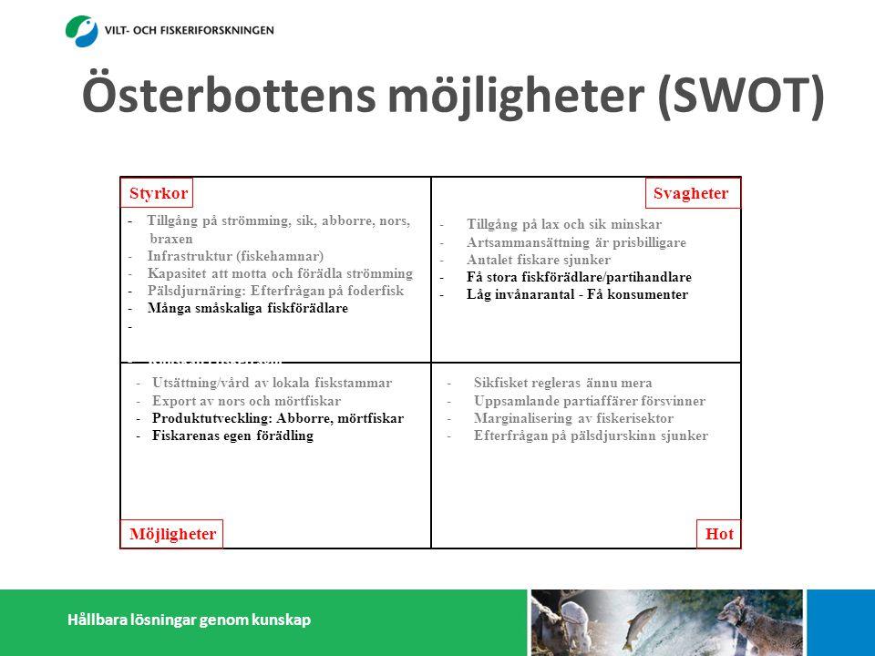 Hållbara lösningar genom kunskap Styrkor Möjligheter Svagheter Hot - Tillgång på strömming, sik, abborre, nors, braxen - Infrastruktur (fiskehamnar) - Kapasitet att motta och förädla strömming - Pälsdjurnäring: Efterfrågan på foderfisk - Många småskaliga fiskförädlare - - Österbottningar håller sig ihop - Kunskap i fiskefrågor -Tillgång på lax och sik minskar -Artsammansättning är prisbilligare -Antalet fiskare sjunker -Få stora fiskförädlare/partihandlare -Låg invånarantal - Få konsumenter -Litet matfiskodling -Isolering -Sikfisket regleras ännu mera -Uppsamlande partiaffärer försvinner -Marginalisering av fiskerisektor -Efterfrågan på pälsdjurskinn sjunker -Konflikter med miljöintresenter -Dålig rykte i massmedia -Utsättning/vård av lokala fiskstammar -Export av nors och mörtfiskar -Produktutveckling: Abborre, mörtfiskar -Fiskarenas egen förädling -Utveckla öppet sjö fiskodling -Utveckla samarbetet mellan fiskare, parti- handlare och förädlare (importfisk) -Starkare samarbetande inom och utanför fiskerikluster Österbottens möjligheter (SWOT)