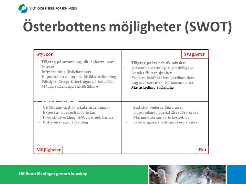 Hållbara lösningar genom kunskap Styrkor Möjligheter Svagheter Hot - Tillgång på strömming, sik, abborre, nors, braxen - Infrastruktur (fiskehamnar) - Kapasitet att motta och förädla strömming - Pälsdjurnäring: Efterfrågan på foderfisk - Många småskaliga fiskförädlare - - Österbottningar håller sig ihop - Kunskap i fiskefrågor -Tillgång på lax och sik minskar -Artsammansättning är prisbilligare -Antalet fiskare sjunker -Få stora fiskförädlare/partihandlare -Låg invånarantal - Få konsumenter -Matfiskodling småskalig -Isolering -Sikfisket regleras ännu mera -Uppsamlande partiaffärer försvinner -Marginalisering av fiskerisektor -Efterfrågan på pälsdjurskinn sjunker -Konflikter med miljöintresenter -Dålig rykte i massmedia -Utsättning/vård av lokala fiskstammar -Export av nors och mörtfiskar -Produktutveckling: Abborre, mörtfiskar -Fiskarenas egen förädling -Utveckla öppet sjö fiskodling -Utveckla samarbetet mellan fiskare, parti- handlare och förädlare (importfisk) -Starkare samarbetande inom och utanför fiskerikluster Österbottens möjligheter (SWOT)
