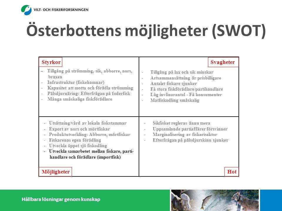 Hållbara lösningar genom kunskap Styrkor Möjligheter Svagheter Hot - Tillgång på strömming, sik, abborre, nors, braxen - Infrastruktur (fiskehamnar) - Kapasitet att motta och förädla strömming - Pälsdjurnäring: Efterfrågan på foderfisk - Många småskaliga fiskförädlare -Tillgång på lax och sik minskar -Artsammansättning är prisbilligare -Antalet fiskare sjunker -Få stora fiskförädlare/partihandlare -Låg invånarantal - Få konsumenter -Matfiskodling småskalig -Sikfisket regleras ännu mera -Uppsamlande partiaffärer försvinner -Marginalisering av fiskerisektor -Efterfrågan på pälsdjurskinn sjunker -Konflikter med miljöintresenter -Dålig rykte i massmedia -Utsättning/vård av lokala fiskstammar -Export av nors och mörtfiskar -Produktutveckling: Abborre, mörtfiskar -Fiskarenas egen förädling -Utveckla öppet sjö fiskodling -Utveckla samarbetet mellan fiskare, parti- handlare och förädlare (importfisk))) -Starkare samarbetande inom och utanför fiskerikluster Österbottens möjligheter (SWOT)
