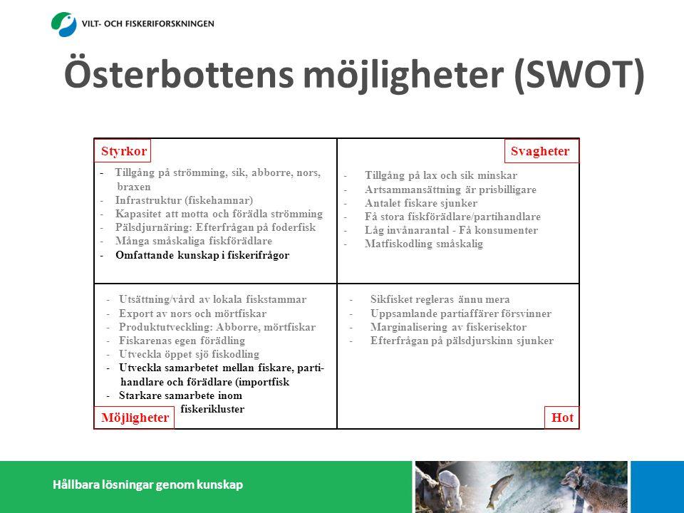 Hållbara lösningar genom kunskap Styrkor Möjligheter Svagheter Hot - Tillgång på strömming, sik, abborre, nors, braxen - Infrastruktur (fiskehamnar) - Kapasitet att motta och förädla strömming - Pälsdjurnäring: Efterfrågan på foderfisk - Många småskaliga fiskförädlare - Omfattande kunskap i fiskerifrågor -Tillgång på lax och sik minskar -Artsammansättning är prisbilligare -Antalet fiskare sjunker -Få stora fiskförädlare/partihandlare -Låg invånarantal - Få konsumenter -Matfiskodling småskalig -Sikfisket regleras ännu mera -Uppsamlande partiaffärer försvinner -Marginalisering av fiskerisektor -Efterfrågan på pälsdjurskinn sjunker -Konflikter med miljöintresenter -Dålig rykte i massmedia -Utsättning/vård av lokala fiskstammar -Export av nors och mörtfiskar -Produktutveckling: Abborre, mörtfiskar -Fiskarenas egen förädling -Utveckla öppet sjö fiskodling -Utveckla samarbetet mellan fiskare, parti- handlare och förädlare (importfisk)) -Starkare samarbete inom och utanför fiskerikluster Österbottens möjligheter (SWOT)