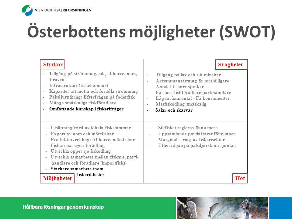 Hållbara lösningar genom kunskap Styrkor Möjligheter Svagheter Hot - Tillgång på strömming, sik, abborre, nors, braxen - Infrastruktur (fiskehamnar) - Kapasitet att motta och förädla strömming - Pälsdjurnäring: Efterfrågan på foderfisk - Många småskaliga fiskförädlare - Omfattande kunskap i fiskerifrågor -Tillgång på lax och sik minskar -Artsammansättning är prisbilligare -Antalet fiskare sjunker -Få stora fiskförädlare/partihandlare -Låg invånarantal - Få konsumenter -Matfiskodling småskalig - Sälar och skarvar -Sikfisket regleras ännu mera -Uppsamlande partiaffärer försvinner -Marginalisering av fiskerisektor -Efterfrågan på pälsdjurskinn sjunker -Dålig rykte i massmedia -Utsättning/vård av lokala fiskstammar -Export av nors och mörtfiskar -Produktutveckling: Abborre, mörtfiskar -Fiskarenas egen förädling -Utveckla öppet sjö fiskodling -Utveckla samarbetet mellan fiskare, parti- handlare och förädlare (importfisk)) -Starkare samarbete inom och utanför fiskerikluster Österbottens möjligheter (SWOT)