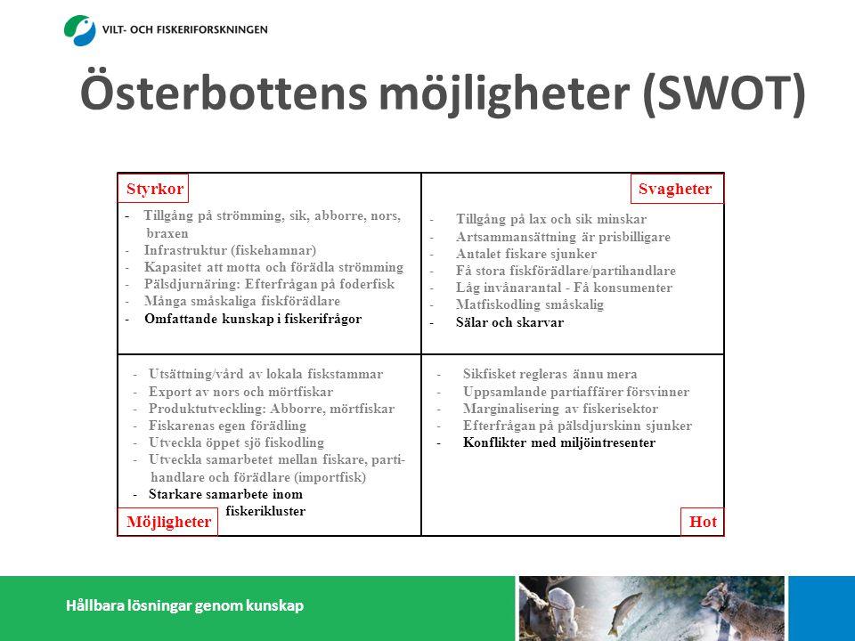 Hållbara lösningar genom kunskap Styrkor Möjligheter Svagheter Hot - Tillgång på strömming, sik, abborre, nors, braxen - Infrastruktur (fiskehamnar) - Kapasitet att motta och förädla strömming - Pälsdjurnäring: Efterfrågan på foderfisk - Många småskaliga fiskförädlare - Omfattande kunskap i fiskerifrågor -Tillgång på lax och sik minskar -Artsammansättning är prisbilligare -Antalet fiskare sjunker -Få stora fiskförädlare/partihandlare -Låg invånarantal - Få konsumenter -Matfiskodling småskalig -Sälar och skarvar -Sikfisket regleras ännu mera -Uppsamlande partiaffärer försvinner -Marginalisering av fiskerisektor -Efterfrågan på pälsdjurskinn sjunker -Konflikter med miljöintresenter -Dålig rykte i massmedia -Utsättning/vård av lokala fiskstammar -Export av nors och mörtfiskar -Produktutveckling: Abborre, mörtfiskar -Fiskarenas egen förädling -Utveckla öppet sjö fiskodling -Utveckla samarbetet mellan fiskare, parti- handlare och förädlare (importfisk) -Starkare samarbete inom och utanför fiskerikluster Österbottens möjligheter (SWOT)
