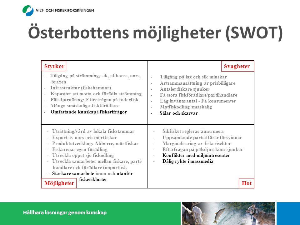 Hållbara lösningar genom kunskap Styrkor Möjligheter Svagheter Hot - Tillgång på strömming, sik, abborre, nors, braxen - Infrastruktur (fiskehamnar) - Kapasitet att motta och förädla strömming - Pälsdjurnäring: Efterfrågan på foderfisk - Många småskaliga fiskförädlare - Omfattande kunskap i fiskerifrågor -Tillgång på lax och sik minskar -Artsammansättning är prisbilligare -Antalet fiskare sjunker -Få stora fiskförädlare/partihandlare -Låg invånarantal - Få konsumenter -Matfiskodling småskalig - Sälar och skarvar -Sikfisket regleras ännu mera -Uppsamlande partiaffärer försvinner -Marginalisering av fiskerisektor -Efterfrågan på pälsdjurskinn sjunker -Konflikter med miljöintresenter -Dålig rykte i massmedia -Utsättning/vård av lokala fiskstammar -Export av nors och mörtfiskar -Produktutveckling: Abborre, mörtfiskar -Fiskarenas egen förädling -Utveckla öppet sjö fiskodling -Utveckla samarbetet mellan fiskare, parti- handlare och förädlare (importfisk)) -Starkare samarbete inom och utanför fiskerikluster Österbottens möjligheter (SWOT)