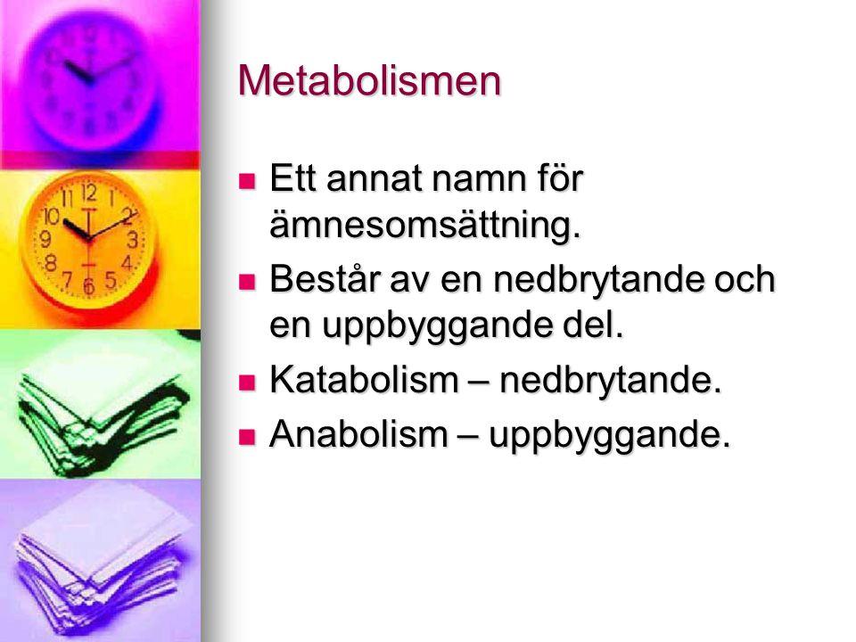 Metabolismen  Ett annat namn för ämnesomsättning.  Består av en nedbrytande och en uppbyggande del.  Katabolism – nedbrytande.  Anabolism – uppbyg
