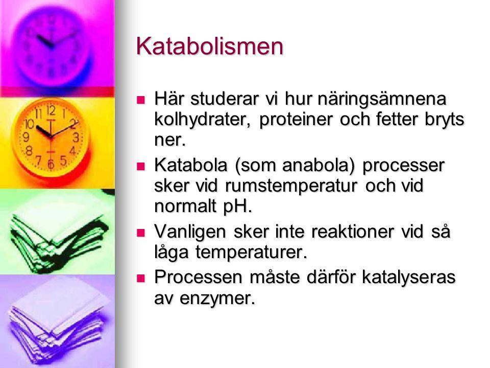 Katabolismen  Här studerar vi hur näringsämnena kolhydrater, proteiner och fetter bryts ner.  Katabola (som anabola) processer sker vid rumstemperat