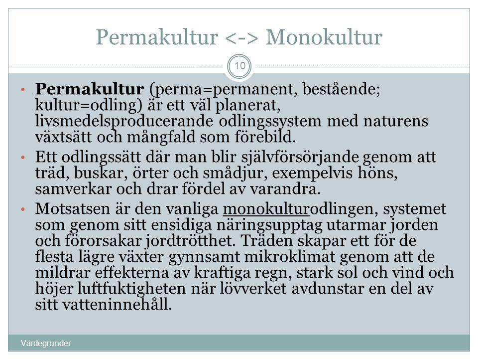 Permakultur Monokultur Värdegrunder 10 • Permakultur (perma=permanent, bestående; kultur=odling) är ett väl planerat, livsmedelsproducerande odlingssy