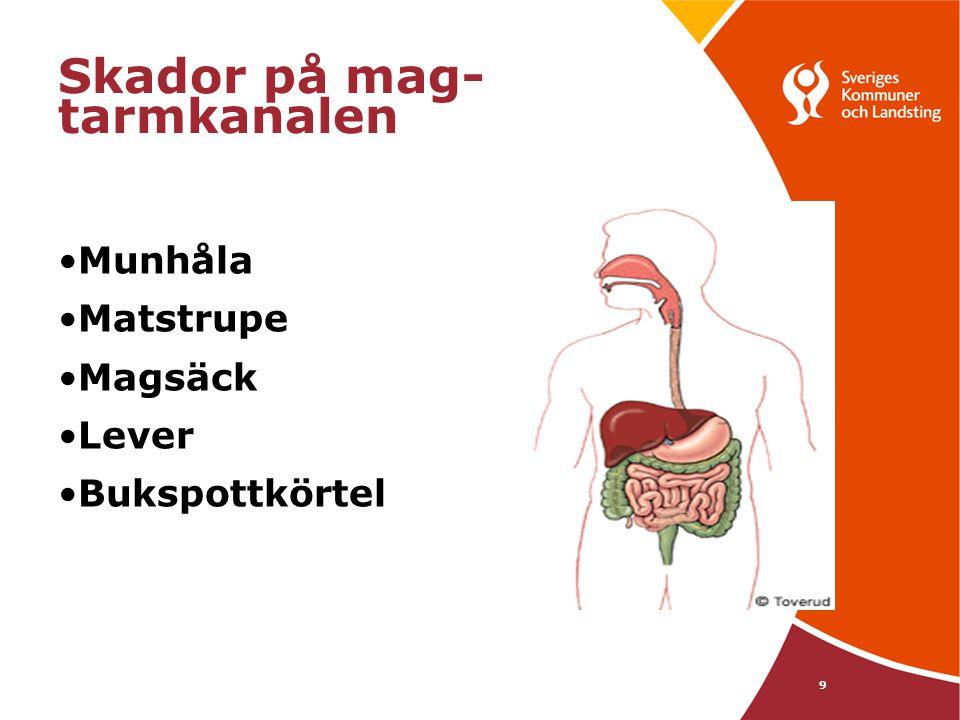 9 Skador på mag- tarmkanalen •Munhåla •Matstrupe •Magsäck •Lever •Bukspottkörtel