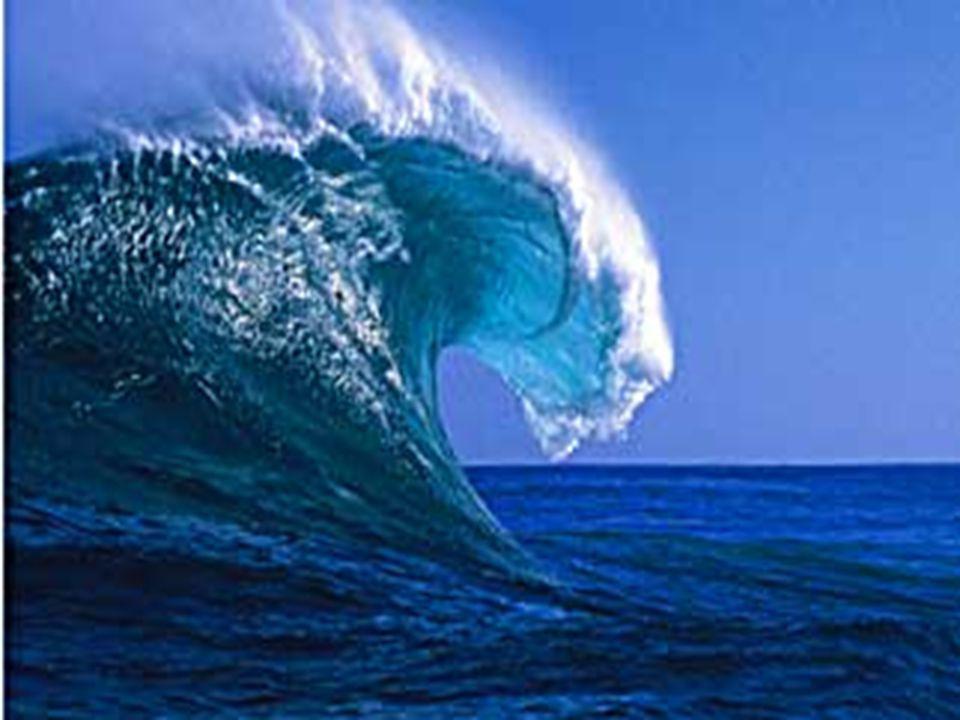 Ord: sonar  Ljud kan användas för att se genom vatten  Det går till så att ett ljud skickas ut och sedan mäter man ekot som kommer tillbaks  Sonar används i U-båtar