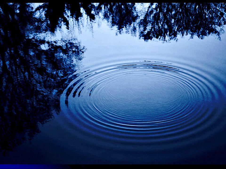 Vågor i vatten:  Vågen rör sig framåt genom vattnet.
