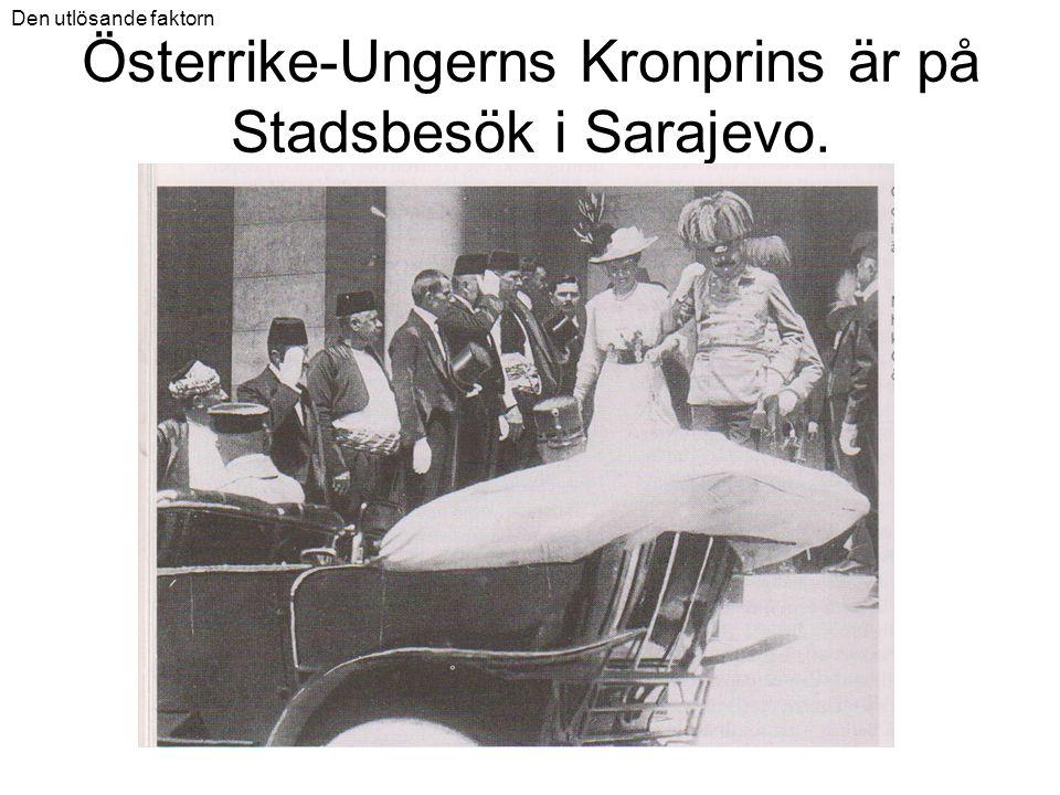 Österrike-Ungerns Kronprins är på Stadsbesök i Sarajevo. Den utlösande faktorn