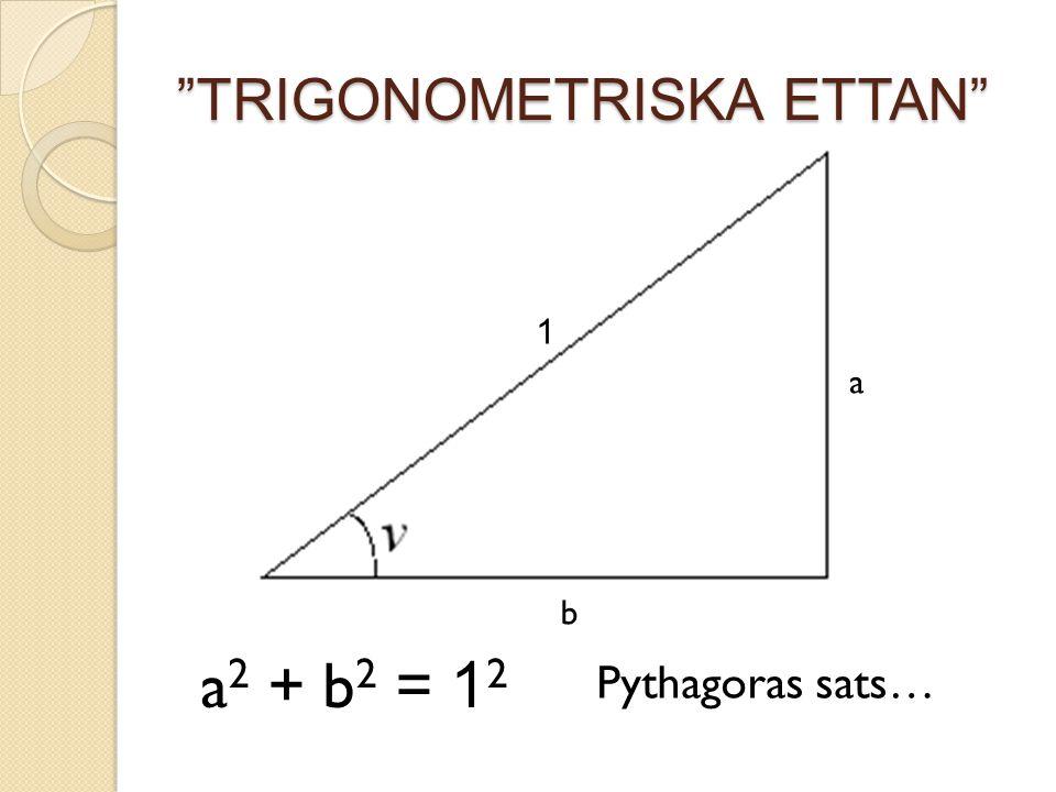 """TRIGONOMETRISKA ETTAN"" 1 a b a 2 + b 2 = 1 2 Pythagoras sats…"