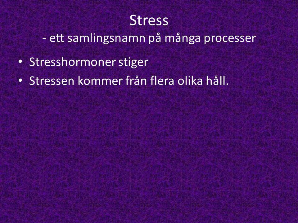 Stress - ett samlingsnamn på många processer • Stresshormoner stiger • Stressen kommer från flera olika håll.