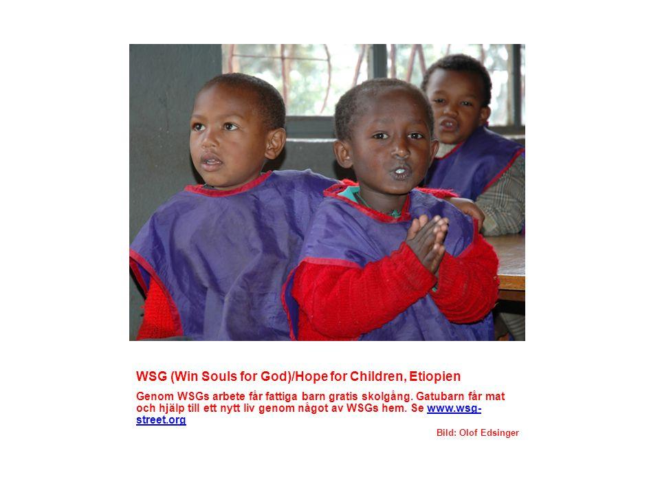 Dövskolor i Keren och Asmara, Eritrea Många döva barn, som annars inte skulle fått lämplig skolgång, får genom dövskolorna chans till en utbildning.