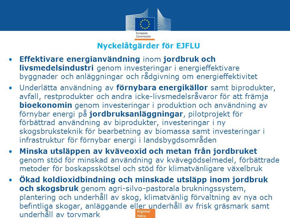 Regional Policy Nyckelåtgärder för EJFLU •Effektivare energianvändning inom jordbruk och livsmedelsindustri genom investeringar i energieffektivare by