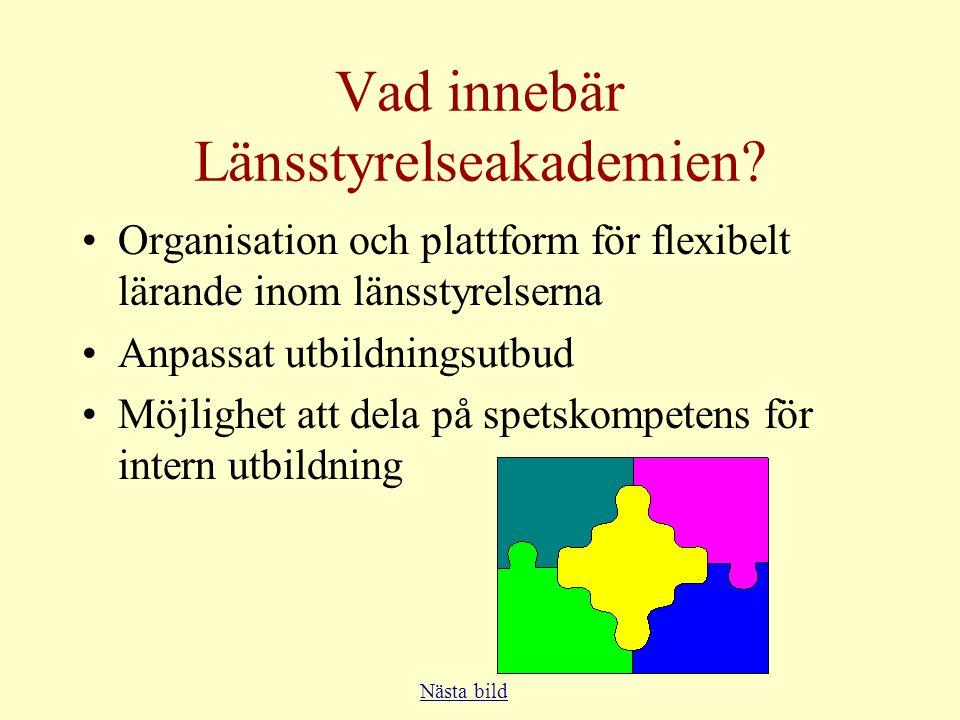 Vision (2) •Som ett nav i organisationen finns ett akademicentrum.