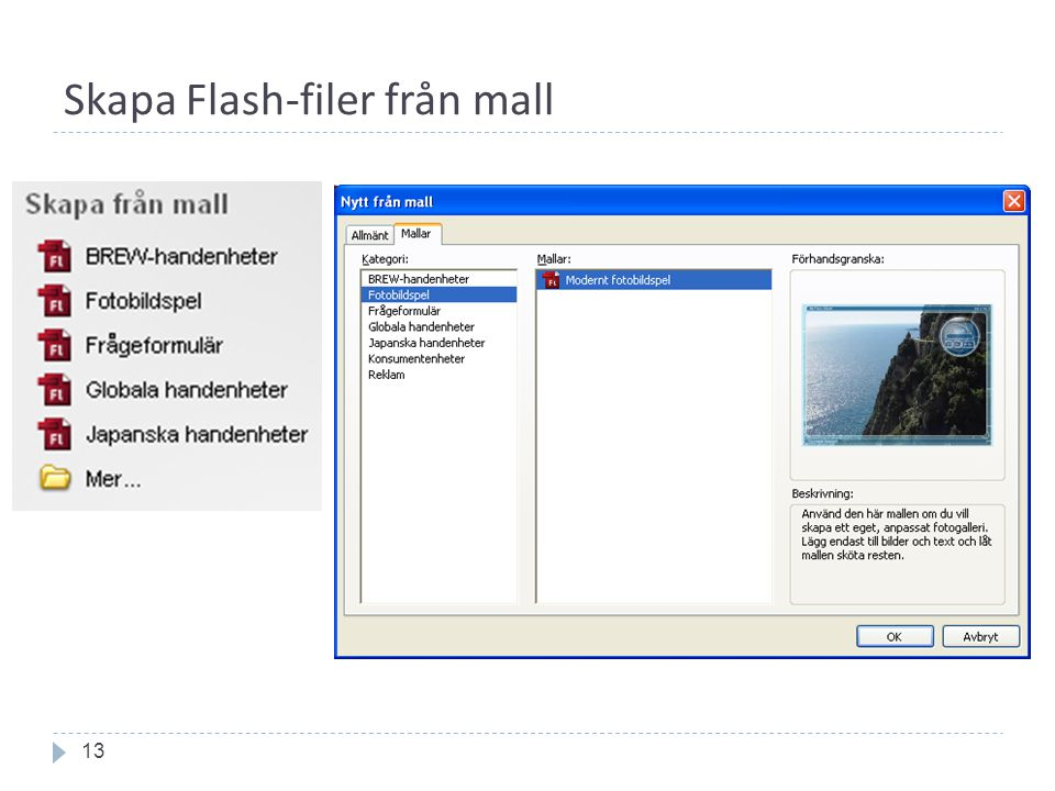 Skapa Flash-filer från mall 13
