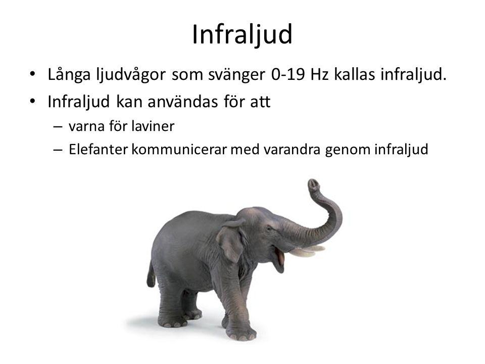 Infraljud • Långa ljudvågor som svänger 0-19 Hz kallas infraljud. • Infraljud kan användas för att – varna för laviner – Elefanter kommunicerar med va