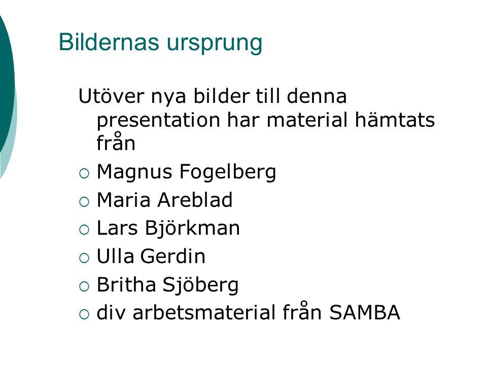 Bildernas ursprung Utöver nya bilder till denna presentation har material hämtats från  Magnus Fogelberg  Maria Areblad  Lars Björkman  Ulla Gerdi