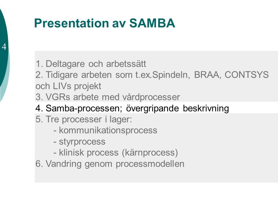 1. Deltagare och arbetssätt 2. Tidigare arbeten som t.ex.Spindeln, BRAA, CONTSYS och LIVs projekt 3. VGRs arbete med vårdprocesser 4. Samba-processen;