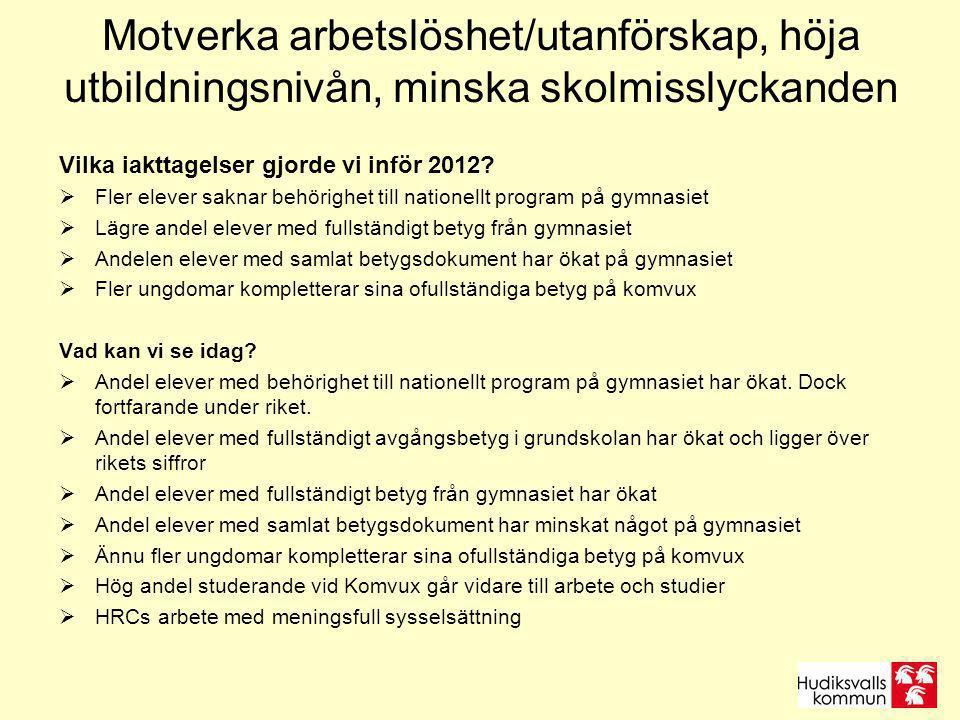 Motverka arbetslöshet/utanförskap, höja utbildningsnivån, minska skolmisslyckanden Vilka iakttagelser gjorde vi inför 2012.