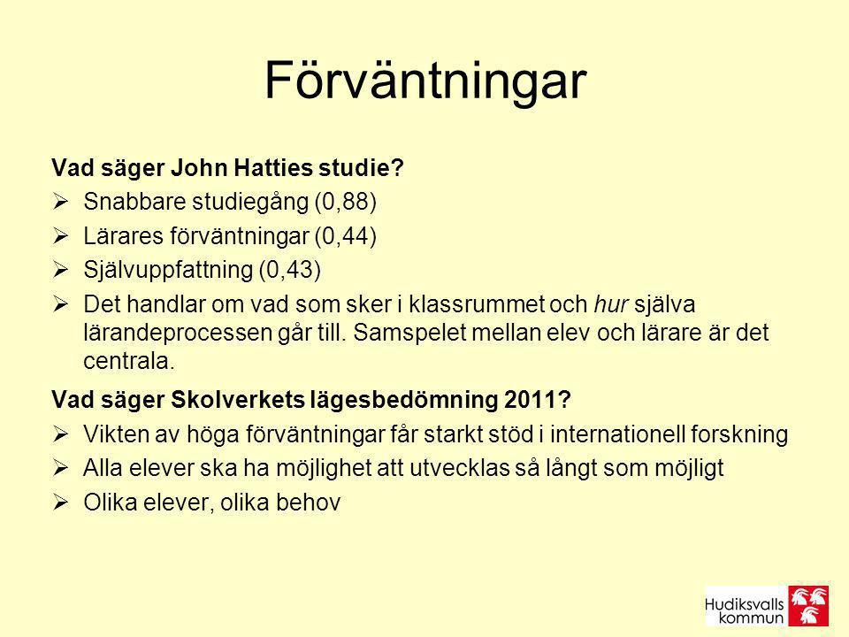 Förväntningar Vad säger John Hatties studie.
