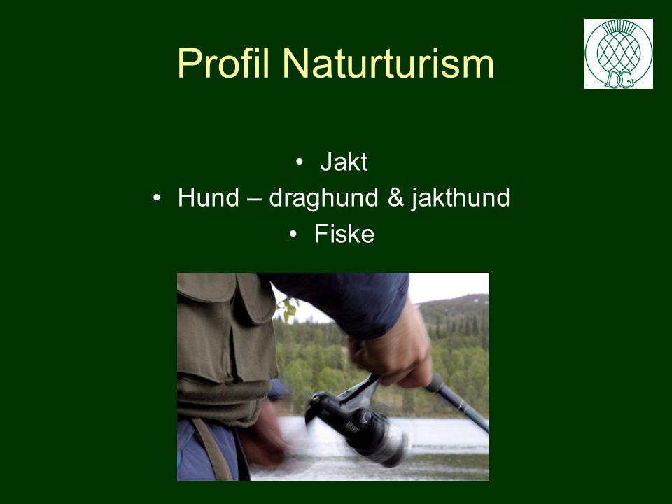 SKOG - Naturturism