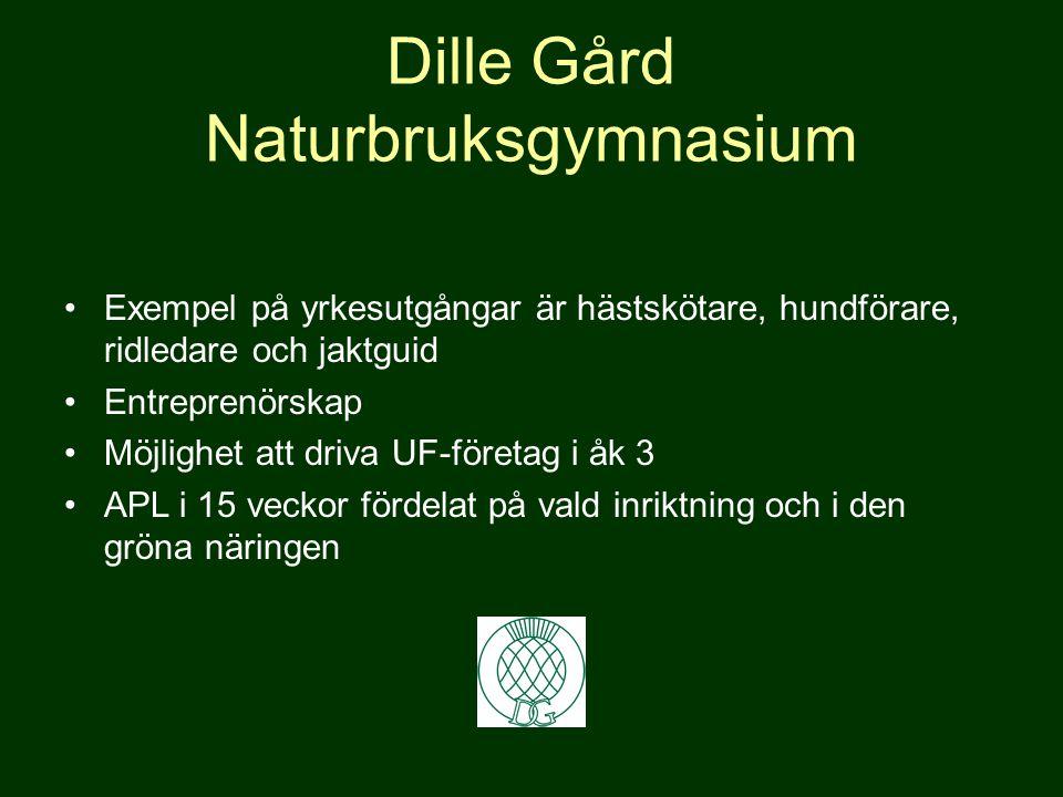 Lärlingsutbildning Praktik och skola varvas Praktikplats inom Islandshäst, draghund, jakt & fiske