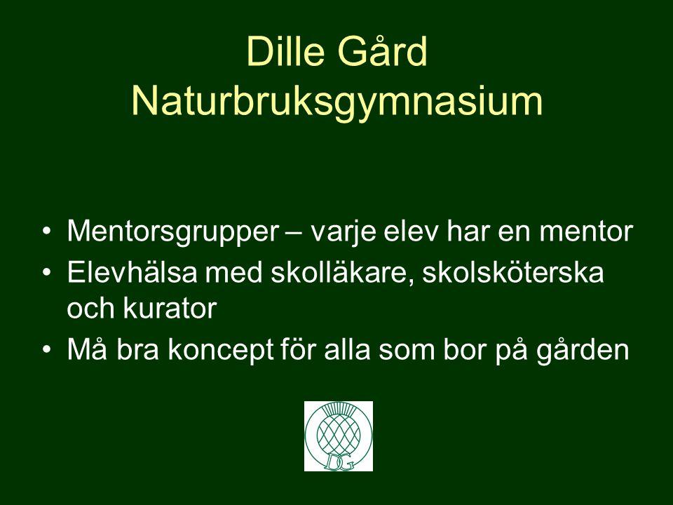 Naturbruksprogrammet - Perfekt för dig som vill läsa vidare på Sveriges Lantbruksuniversitet Veterinär * Hippolog * Lantmästare Agronom * Skogsmästare