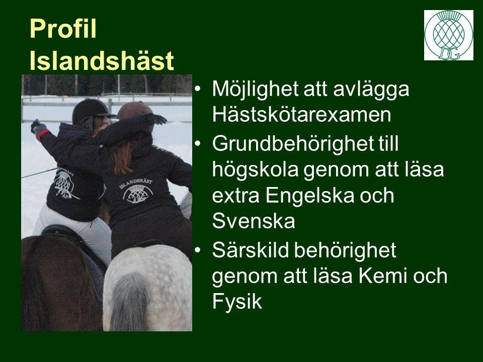 Profil Islandshäst •Möjlighet att avlägga Hästskötarexamen •Grundbehörighet till högskola genom att läsa extra Engelska och Svenska •Särskild behörighet genom att läsa Kemi och Fysik