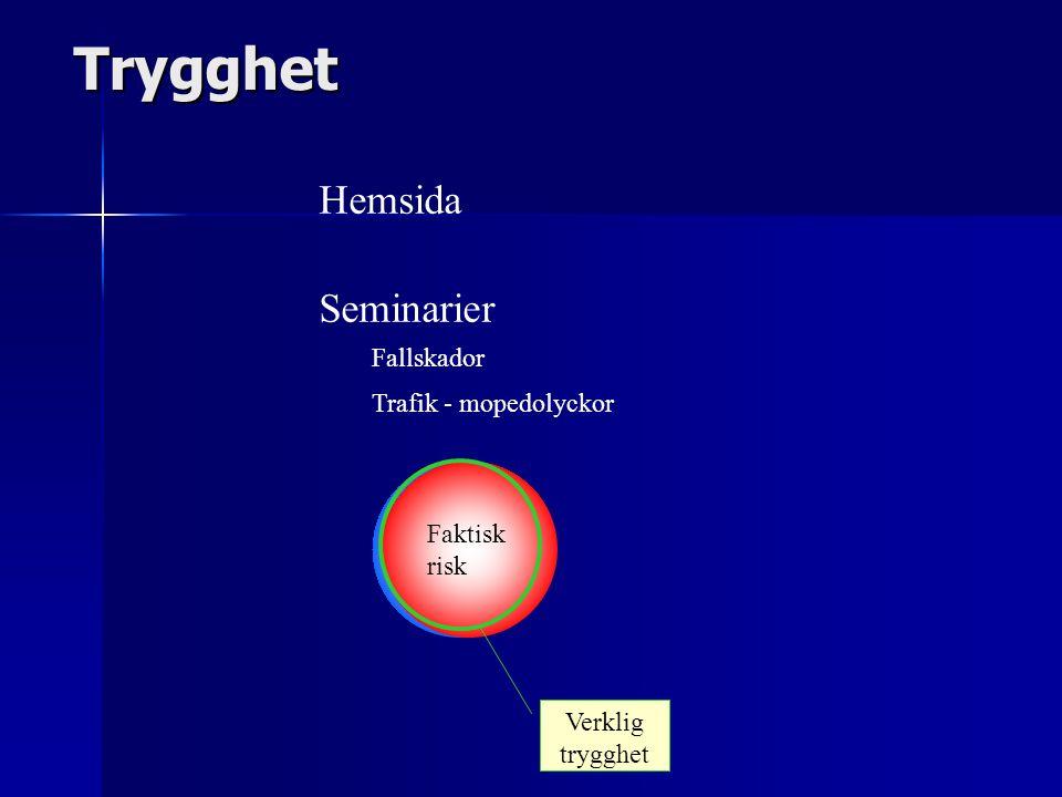 Trygghet Upplevd risk Faktisk risk Verklig trygghet Hemsida Seminarier Fallskador Trafik - mopedolyckor
