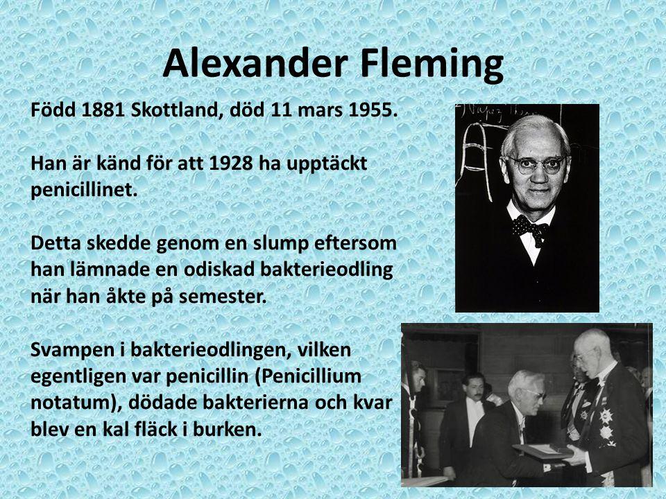 Alexander Fleming Född 1881 Skottland, död 11 mars 1955. Han är känd för att 1928 ha upptäckt penicillinet. Detta skedde genom en slump eftersom han l
