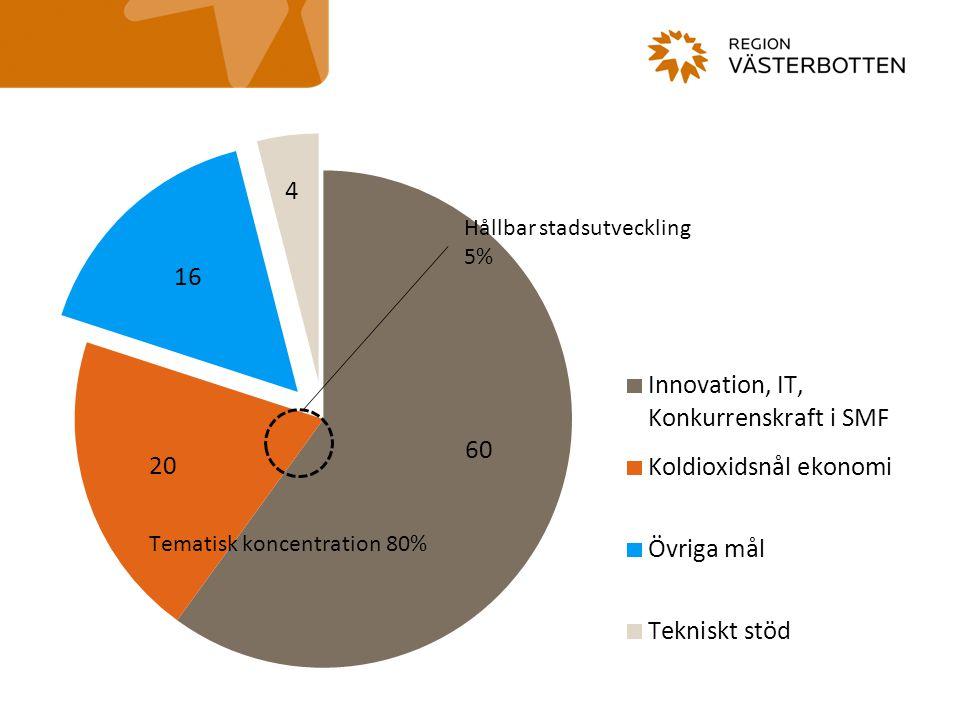 Till grund för innehållet … Analys Projekt- & program resultat RUS/strategier Nuläge tematiska områden Socioekonomisk analys för ESF