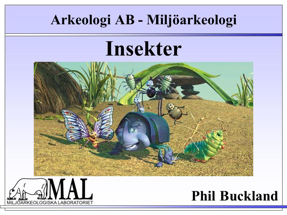 Insekter Phil Buckland Arkeologi AB - Miljöarkeologi