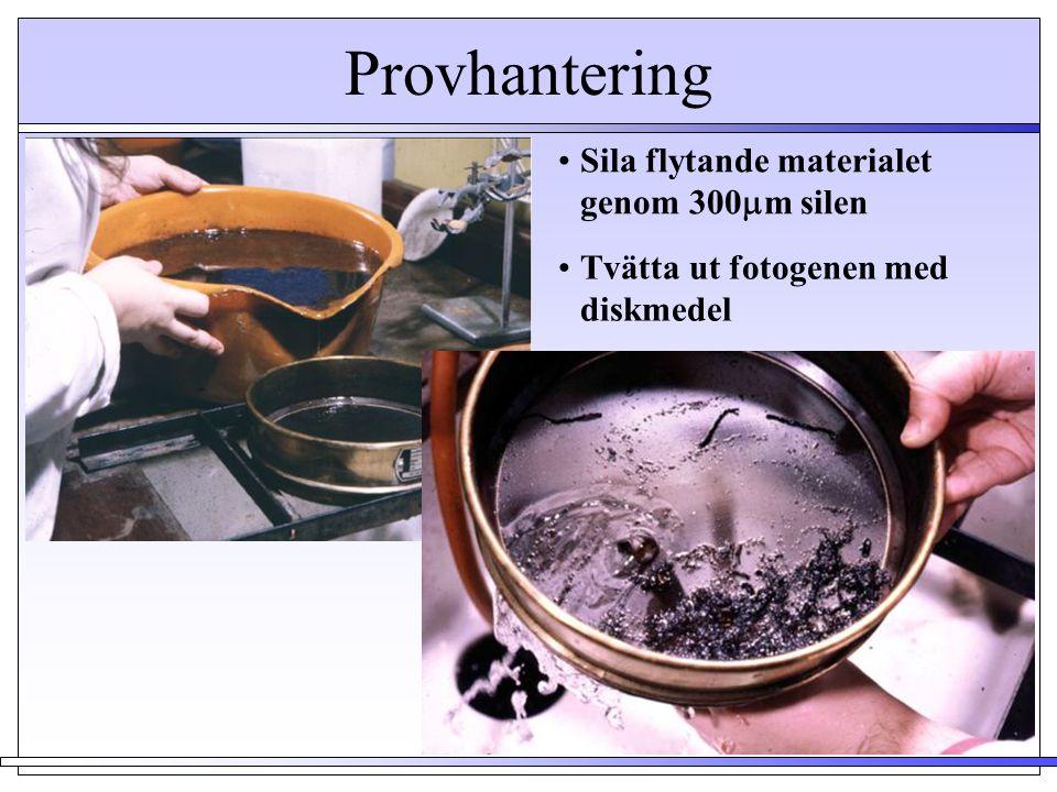 Provhantering •Sila flytande materialet genom 300  m silen Flotant Residue •Tvätta ut fotogenen med diskmedel