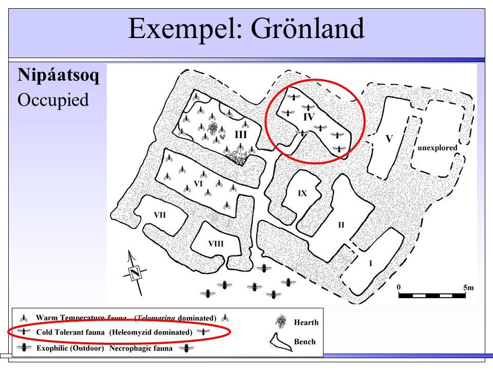 Exempel: Grönland Nipáatsoq Occupied