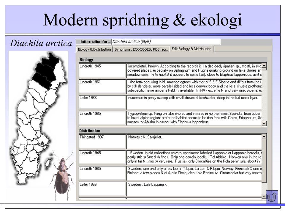 Diachila arctica Modern spridning & ekologi