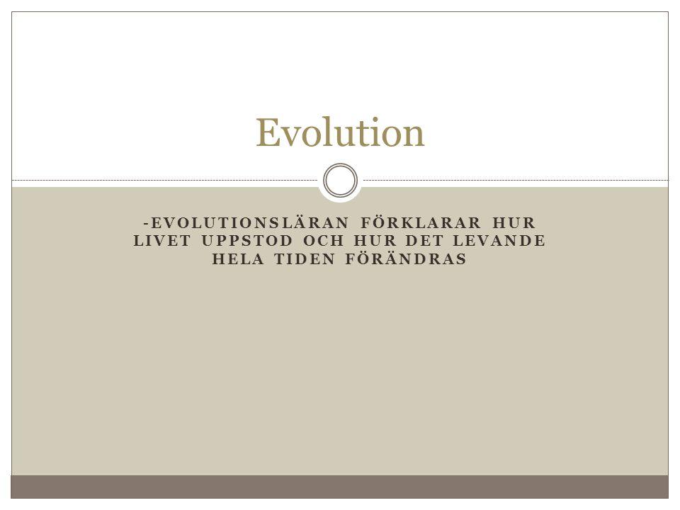 -EVOLUTIONSLÄRAN FÖRKLARAR HUR LIVET UPPSTOD OCH HUR DET LEVANDE HELA TIDEN FÖRÄNDRAS Evolution