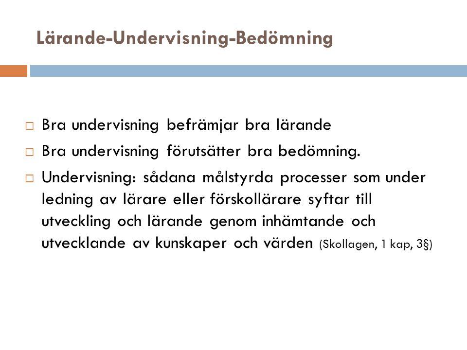Lärande-Undervisning-Bedömning  Bra undervisning befrämjar bra lärande  Bra undervisning förutsätter bra bedömning.  Undervisning: sådana målstyrda
