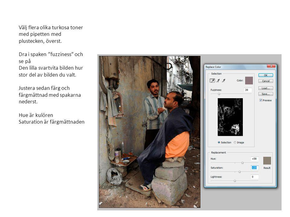 kopiera bilden till höger till klippbordet. Klistra in bilden i den indiska bilden med ctrl-v.