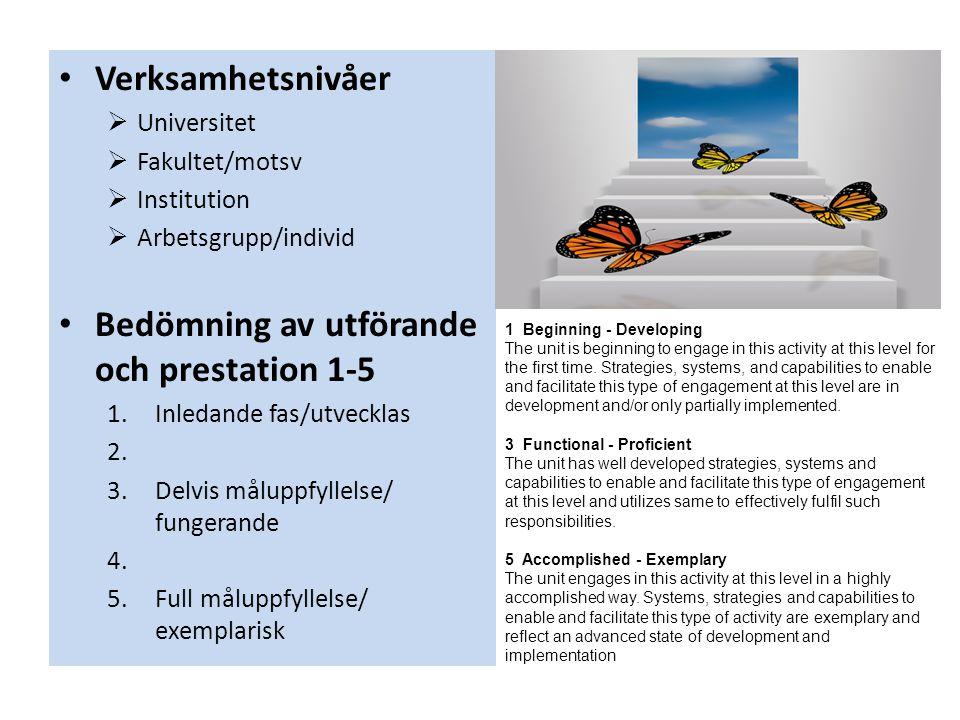 • Verksamhetsnivåer  Universitet  Fakultet/motsv  Institution  Arbetsgrupp/individ • Bedömning av utförande och prestation 1-5 1.Inledande fas/utvecklas 2.